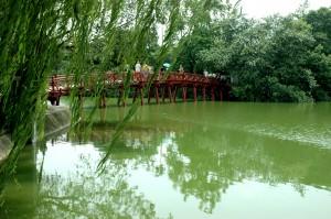 Liễu rủ bên hồ Gươm