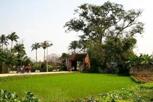 Cổng vào làng cổ Đường Lâm (thị xã Sơn Tây)