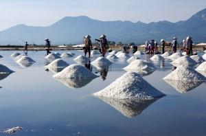 Ruộng muối ở Hòn Khói