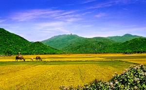 Núi Bà ở Bình Định