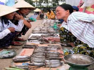 Thịt chuột bán ở chợ Thùi