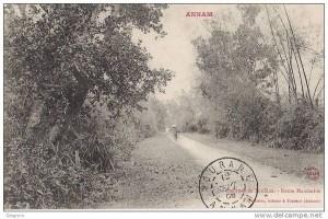 Đoạn đường cái quan ở Quảng Nam hồi đầu thế kỉ XX (Pháp gọi là route mandarine)