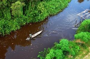 Rạch nước đỏ ở rừng U Minh