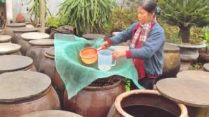 Làm nước mắm ở Do Xuyên