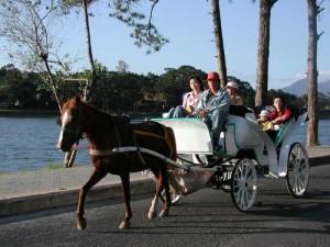 Nài ngựa chở khách du lịch ở Đà Lạt