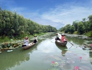 Khu bảo tồn đất ngập nước Láng Sen, Đồng Tháp Mười, Long An