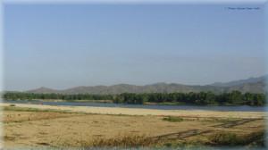 Cánh đồng ở vùng Gò Nổi
