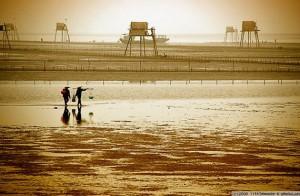 Bãi biển Đồng Châu