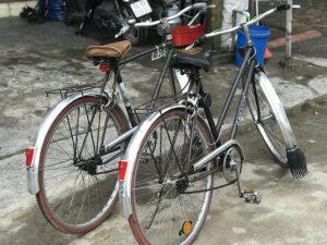 Xe đạp Favorit